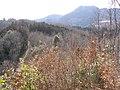 林道と横隈山が見えた - panoramio.jpg