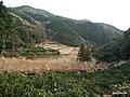 県道12号線 - panoramio (4).jpg
