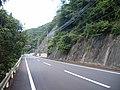 県道198号線 - panoramio.jpg