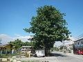 01520jfSanta Ana Pampanga Church Landmarks Roadsfvf 07.jpg