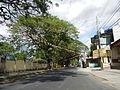 09418jfBinalonan San Manuel Pangasinan Barangays Roads Landmarksfvf 09.JPG
