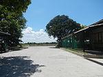 09824jfBinalonan Pangasinan Province Roads Highway Schools Landmarksfvf 02.JPG