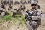 11th MEU's Battalion Landing Team 1-4 Conducts Vertical Assault Training (Image 1 of 5) 160517-M-KJ317-206.jpg
