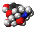 14-Hydroxymorphine molecule spacefill.png