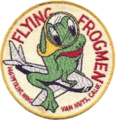 146th Fighter-Interceptor Wing - Unofficial Emblem.png