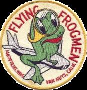 146th Fighter-Interceptor Wing - Unofficial Emblem
