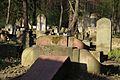 1526viki Cmentarz żydowski przy ul. Lotniczej. Foto Barbara Maliszewska.jpg