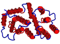 1D9C Bovine-Interferon-Gamma.png