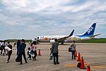 1st flight of the Tohoku Flower Jet DSC06260 (27002676695).jpg