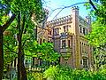 20. «Замок» (мур.), с. Леськове.JPG