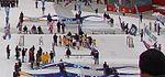 2010 NHL Winter Classic (4241921471) miniature rink.jpg