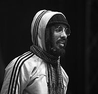 2013-08-25 Chiemsee Reggae Summer - Protoje 6710.JPG