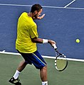 2013 US Open (Tennis) - Qualifying Round - Albano Olivetti (9801203905).jpg
