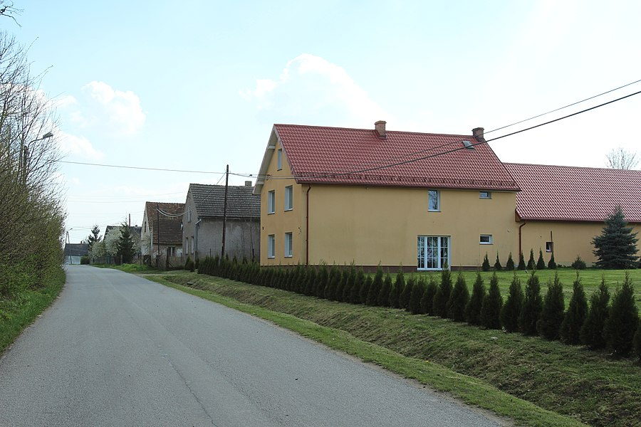 Domaszkowice