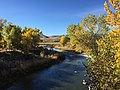 2015-10-30 10 03 07 View south up the Poplar-lined Truckee River during autumn from the Main Street (Nevada State Route 427) bridge in Wadsworth, Nevada.jpg