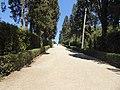2017-06-20 Giardino di Boboli 24.jpg