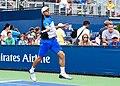 2017 US Open Tennis - Qualifying Rounds - Radu Albot (MDA) (27) def. Frank Dancevic (CAN) (36315498954).jpg