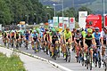 2019 Tour of Austria – 3rd stage 20190608 (47).jpg