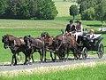 21te Rammenauer Schlossrundfahrt der Pferdegespanne (135).jpg