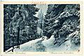 22661-Kipsdorf-1924-Winterwald-Brück & Sohn Kunstverlag.jpg