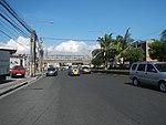 2387Elpidio Quirino Avenue NAIA Road 30.jpg