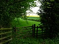 A Quiet Corner - geograph.org.uk - 165585.jpg
