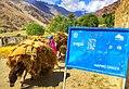 A loaded donkey in teru ghizer district.jpg