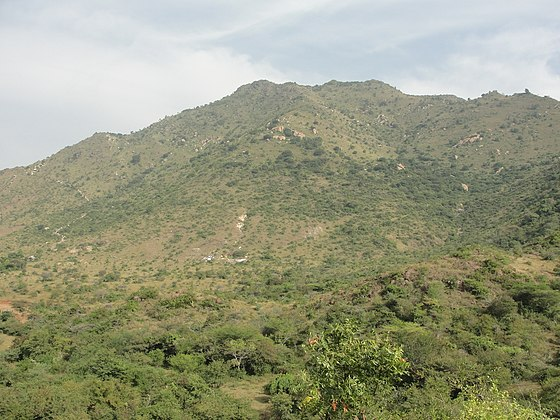 A view of Kanjamalai in the Eastern Ghats near Salem in Tamil Nadu - Eastern Ghats