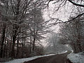 A road between Belvoir and Knipton, Leicestershire - Dec 2005 (2).JPG