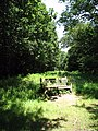 A seat in the sunshine - geograph.org.uk - 895725.jpg