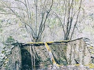 Abandonada en el monte.jpg
