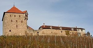 Wildeck Castle (2006)