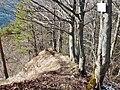 Abstieg nach Bisingen (beim Heiligenkopf 893 m ü. NN), Traufgang - panoramio.jpg