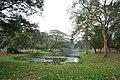 Acharya Jagadish Chandra Bose Indian Botanic Garden - Howrah 2011-02-20 1645.JPG