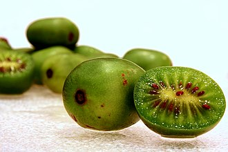 Actinidia arguta - Cross-sectioned and whole hardy kiwifruit (Actinidia arguta)