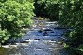 Afon Dwyfor - Llanystumdwy - geograph.org.uk - 1427481.jpg