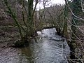 Afon Taf southwest of Llanglydwen - geograph.org.uk - 1703237.jpg