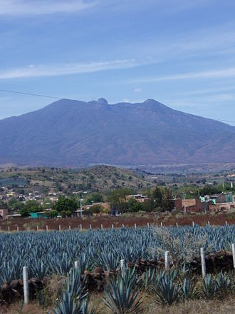 El Arenal, Jalisco - Image: Agave fields mountain