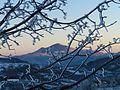 Alpe della Luna al tramonto.jpg