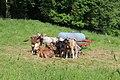 Altusried, Germany - panoramio (46).jpg