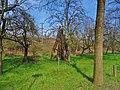 Am Wasserwerk Pirna 118711378.jpg