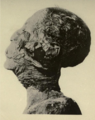 Amenhotep II mummy Carter 4.png