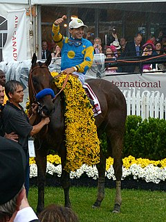 American Pharoah - American Triple Crown
