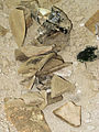 Archeologia Odessa bulvard (10).JPG