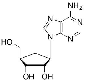 Carbocyclic nucleoside - Aristeromycin