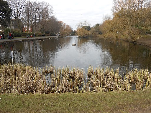 Ashton Park, West Kirby (12)