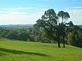 Auchincruive View - geograph.org.uk - 579044.jpg