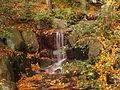 Autumn 8.jpg