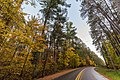 Autumn on McCarthy Beach Road, Minnesota (36837362343).jpg