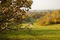 Autumn st hans.jpg
